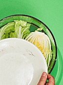 Chinese cabbage in a bowl with water