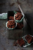 Avocado and chocolate muffins with Greek yoghurt