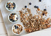 Blueberry yoghurt with coconut granola