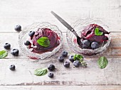 Quick and easy blueberry sorbet