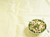 Mushroom farfalle with green asparagus, radishes and rocket