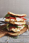 Caprese panini with tomatoes, rocket, mozzarella and pancetta