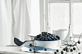 Blackthorn fruits in an enamel bowl with a blackthorn branch and a funnel on a kitchen table