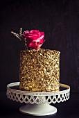 Golden chocolate cake on dark background
