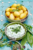 Wild herb quark with peeled potatoes