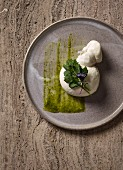 Burrata cheese with cabbage leaves