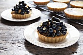 Blueberry and vanilla tartlets on plates and a cooling rack