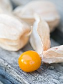 Cape gooseberry (Physalis peruviana) on an old wooden bench