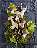 An Autumn still life with stone mushrooms