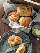 Potato bread rolls with rosemary