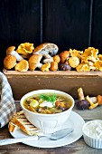 Wild mushroom soup and toasted bread