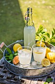 Lemonade in the sunshine with fresh lemons