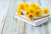 Dandelion flowers scattered over books