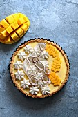 Tart with mango and coconut creamy filling, garnished with whipped cream, coconut strips and fresh mango