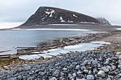 Raised beaches in Svalbard
