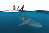 Whale shark and kids