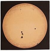 The Sun in 1892