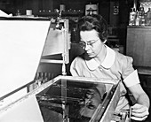 Katharine Burr Blodgett, US physicist