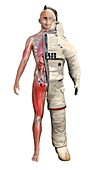 Human body and Mars spacesuit, illustration
