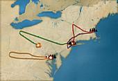 September 11 attacks flight paths, illustration