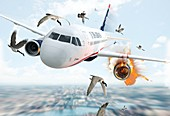 US Airways Flight 1549 incident, illustration