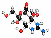 Tetrodotoxin pufferfish neurotoxin molecule