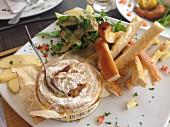 Gebratener Camembert mit geröstetem Brot, Apfelscheiben und Salat