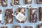 Raw protein bars with chocolate and hazelnuts