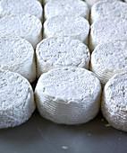 Handmade halloumi cheese (Cyprus)