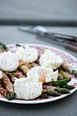 Green asparagus wrapped in bacon with eggs benedict