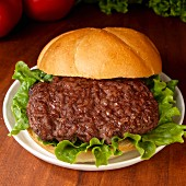 Hamburger with lettuce