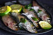 Fresh sardines with slices of lime on a metal plate (close-up)