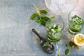 Cocktail Gin Basil Smash