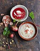 Chioggia beet soup with trout and beetroot soup