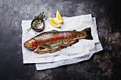 Fresh raw trout fish with lemon and salt on dark background