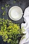 An empty white tea cup, a linen cloth, and green blossoms (top view)