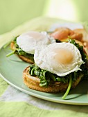 Eggs Benedict on toasted bread with spinach leaves