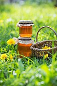 Two glasses of dandelion syrup in a meadow