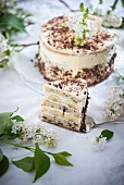 Stracciatella, banana, and vanilla cream cake (vegan)