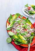 Asian Pork and Noodle Salad