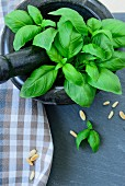 Fresh basil in a mortar, with scattered pine nuts