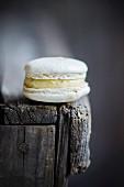 Vanille-Macaron auf Holztisch