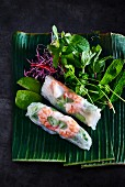 Spring rolls with shrimps (Asia)