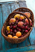 Fresh apricots, peaches and cherries in a basket