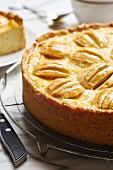 Apple and sour cream cake (close up)