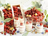 Fresh raspberries and raspberry and vanilla ice cream in glasses