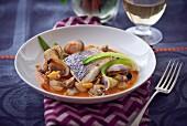 Seebarsch und Venusmuscheln in Tomatensauce