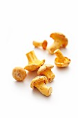 Fresh chanterelle mushrooms on a white background