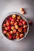 Rainier cherries in a ceramic bowl