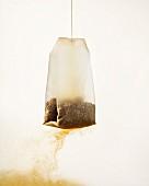 Teebeutel im Wasser